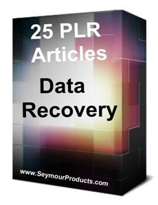 25 Data Recovery PLR Articles 1
