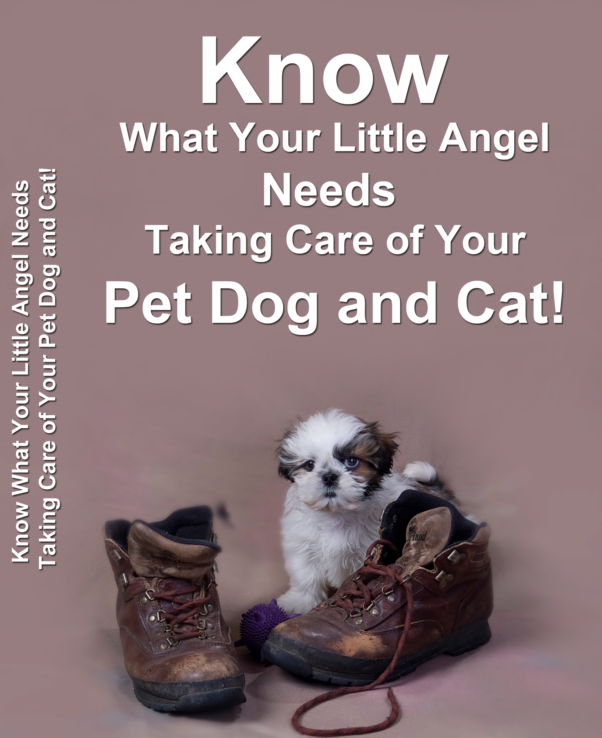 Know What Your Little Angel Needs – Taking Care of Your Pet Dog and Cat 14