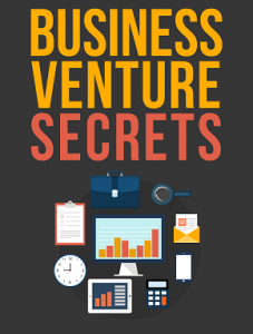 businessventure
