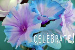 celebrate-in-blue