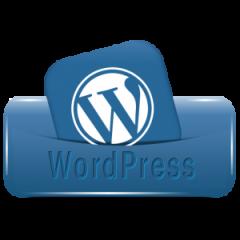10 Needed Tips for WordPress Beginners